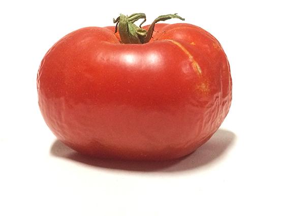eves-tomato-72